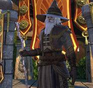 Elminster in Protector's Enclave