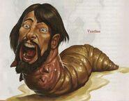 Vanthus Larva