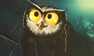 Owlbear young
