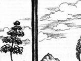 Duskwood (tree)