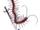 Megalo-centipede