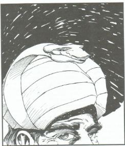 Vizier's turban