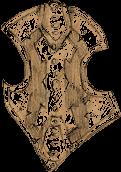Delryn family shield