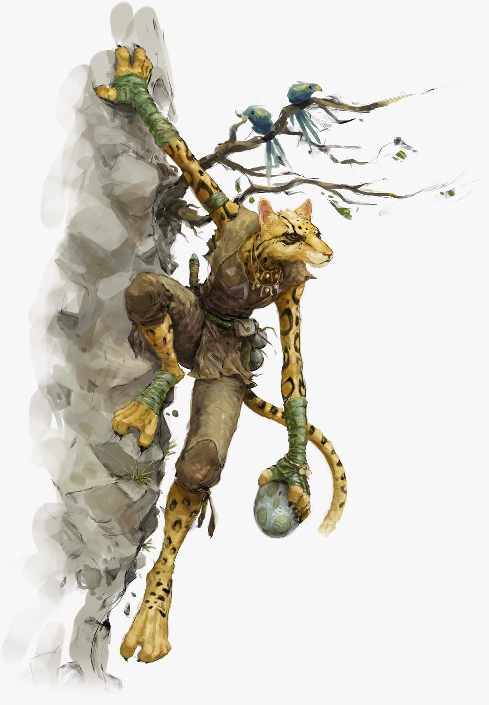Tabaxi Forgotten Realms Wiki Fandom The tabaxi's free skills help to further pad the bard's already excellent skills. tabaxi forgotten realms wiki fandom