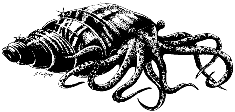 Golden ammonite