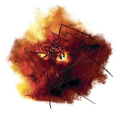 Inferno spider