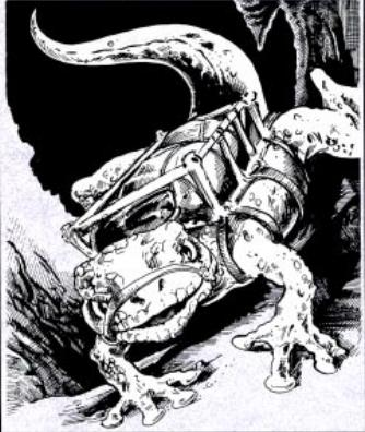Subterranean lizard