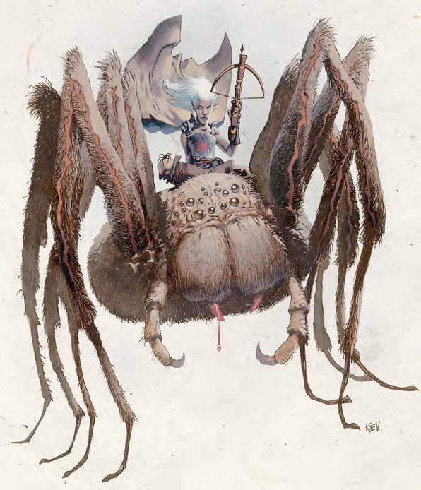 Arachne