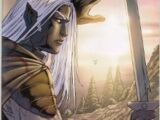 The Legend of Drizzt: Sojourn 1