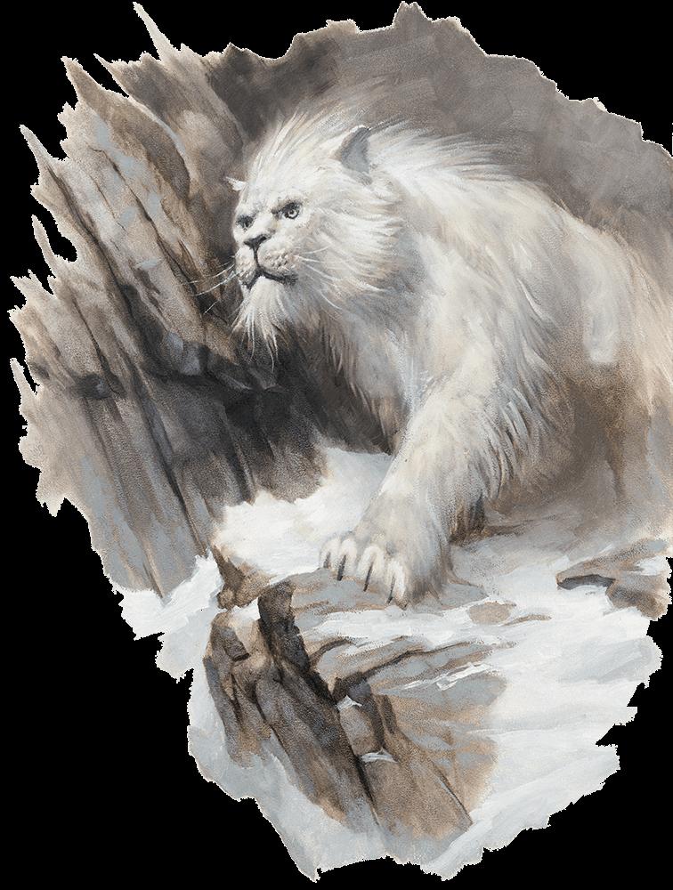 Crag cat
