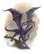 Baby Purple Dragon