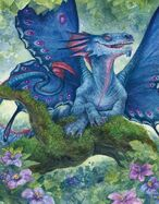 Faerie Dragon AFRT