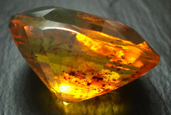 Amber-faceted-inclusions