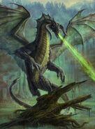Black Dragon Borderless AFR