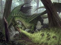 Green dragon AFR