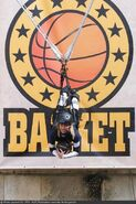 Fort-boyard-2020-officielle-equipe01-01-Camille Cerf-Basket