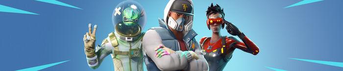 Fortnite Skins Banner.jpg