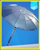 Paraguas victoria.png