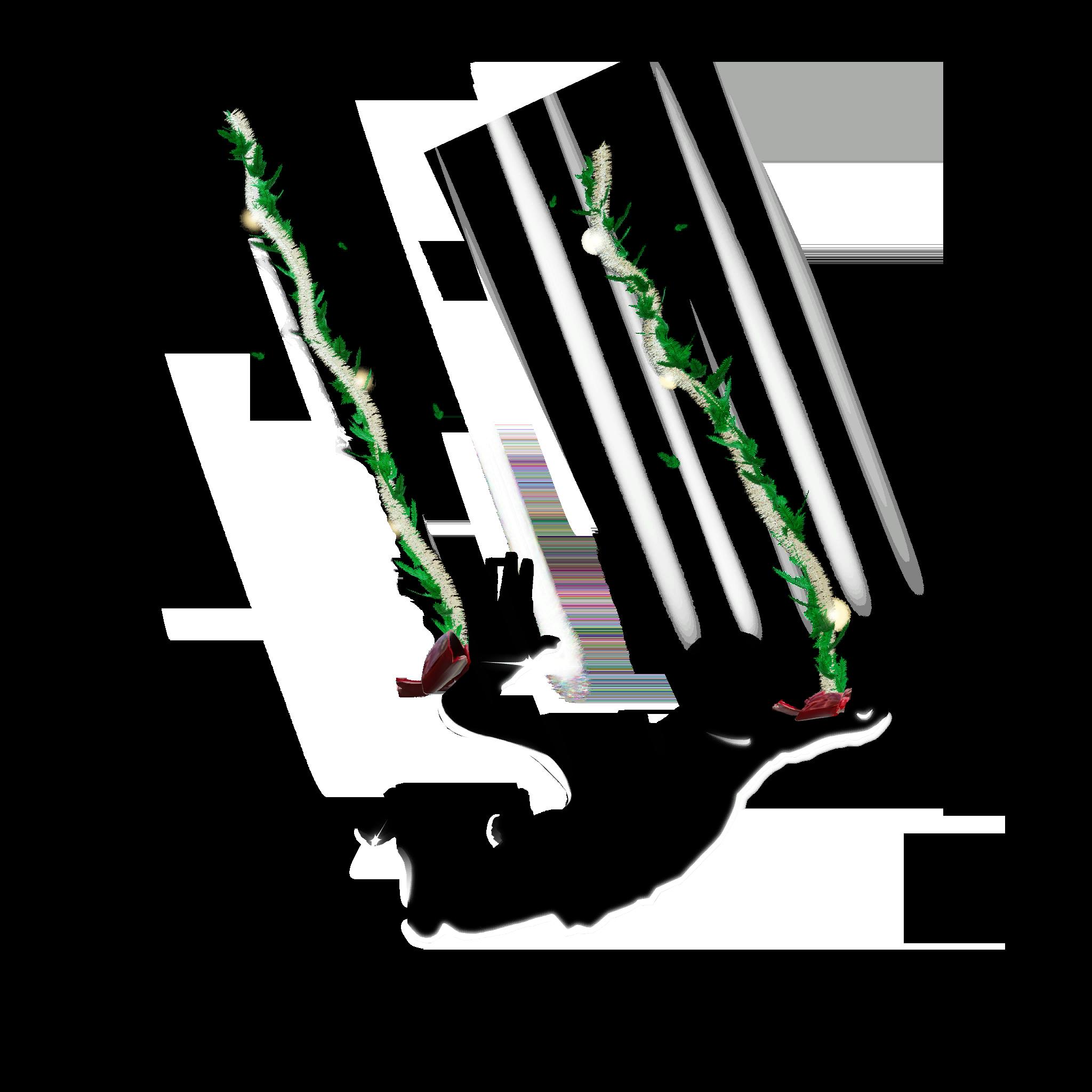 Branches Décorées