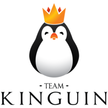 Team Kinguinlogo square.png