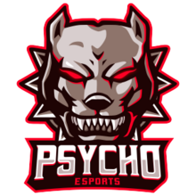 Psycho Esports transparent.png