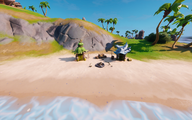 Coral Cove 11.png