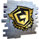 FNCS 2020Icon.png