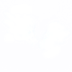 Perfect Wings.png