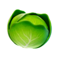 T-T-Icon-BR-Cabbage-L.png