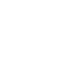 Icon (45).png