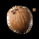 CoconutIcon.png