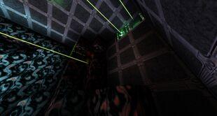 HiveMindFarm-LaserGates.jpg