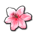 【March】 Sakura Petal