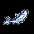 Vigorous Sardine