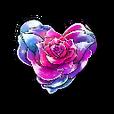 【February】 Rose