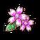 桜花の印章
