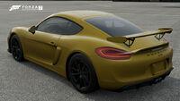 FM7 Porsche Cayman Rear