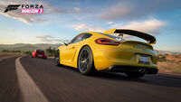 FH3 Cayman GT4 16 Official