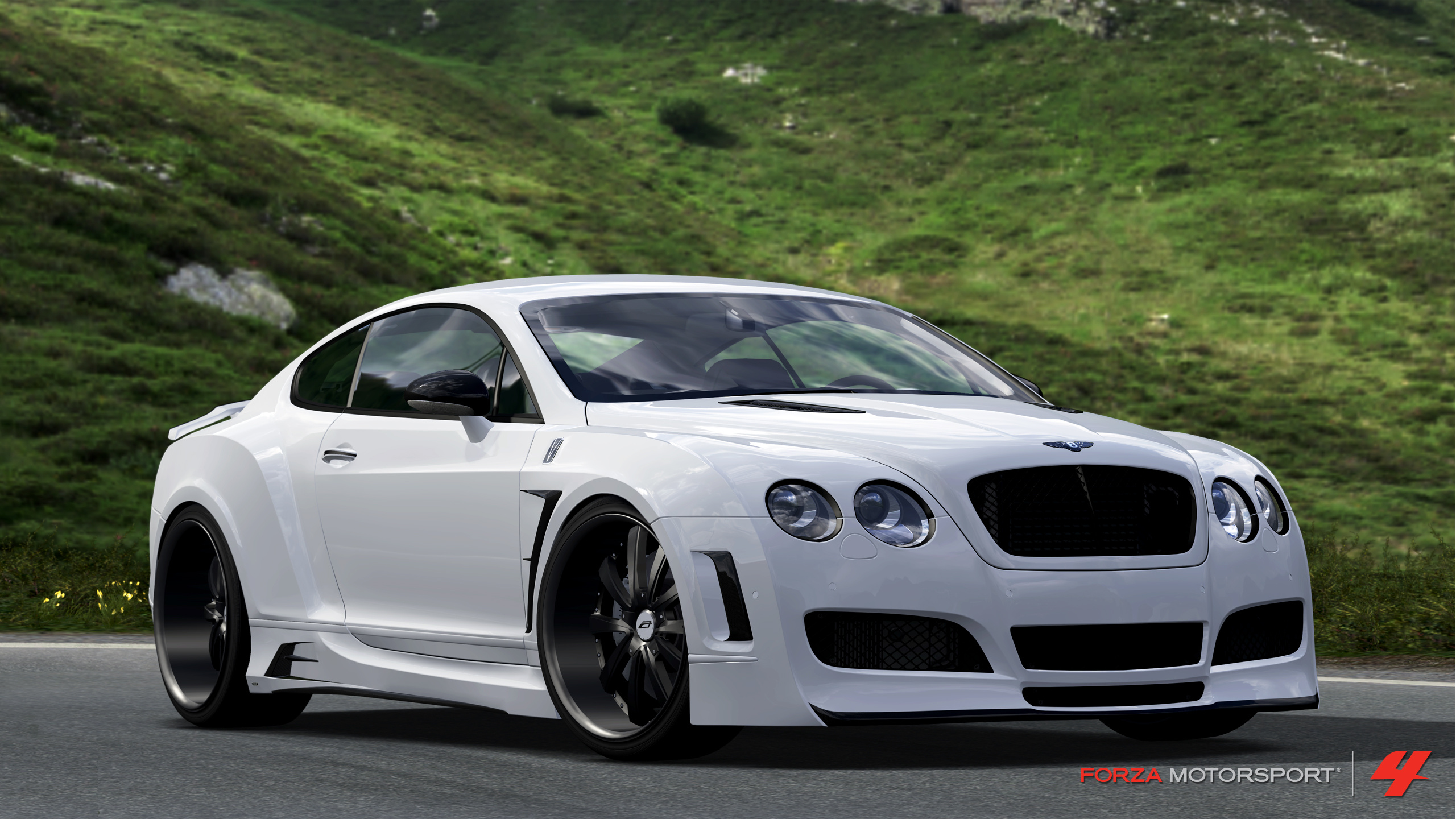 Bentley Platinum Motorsports Continental GT