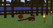 Velociraptorsleeping