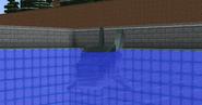 Megalodoninwater
