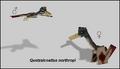 Quetzalcoatlus Preview