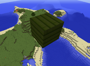 Calamites plank
