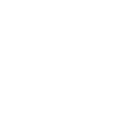 The Ignifist's in-game icon.