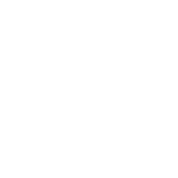 The Niska Mk. 2's in-game icon.