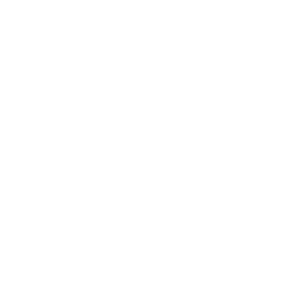 The Storm Cannon's in-game icon.