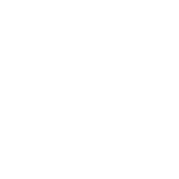 Anti Infantry Flak Gun Structure Icon.png