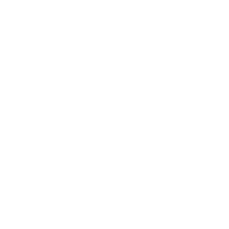 The Tier 1 Gate's in-game icon.