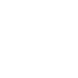 The Bomastone Grenade's in-game icon.