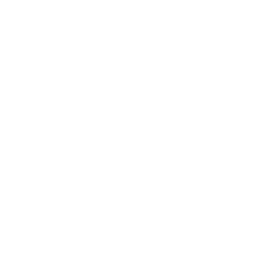 The Hospital's in-game icon.